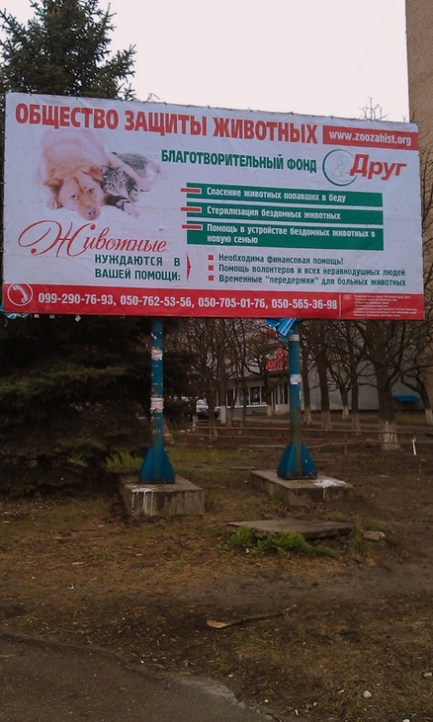 Eastern Ukrainian animal welfare charity Droog lists its activities and solicits help in this Russian-language billboard on one of the thoroughfares of Kramatorsk, Ukraine (Photo by Andy Kozlov)